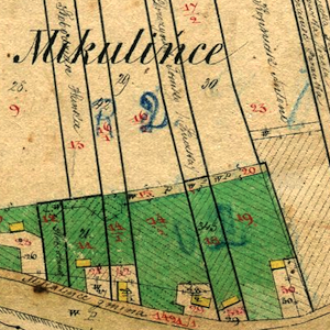 Mikulińce Town Cadastral Map 1861, with Neighboring Villages